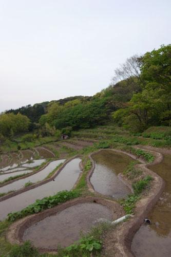 100511ishibu01