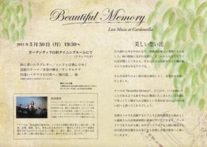 Beautiful_memory_297